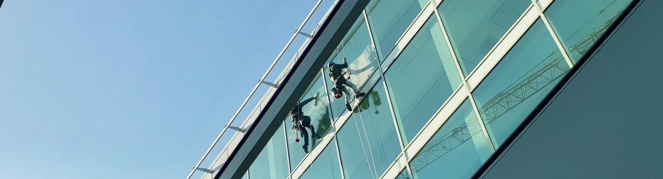 Deux cordistes effectuent leur travail en hauteur